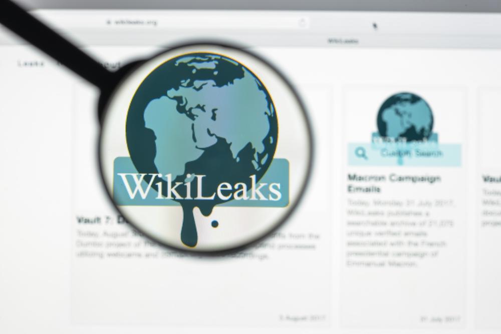 """Stefania Maurizi zu Assange: """"Das ist ein unglaubliches Versagen des  Journalismus"""""""